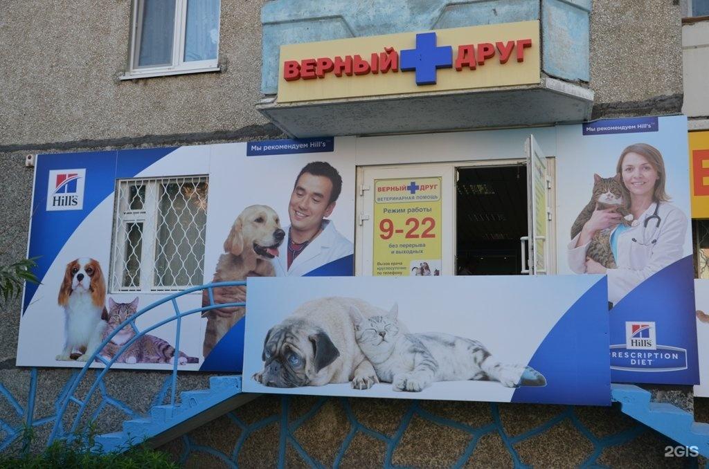 Ветеринарная клиника новая площадь