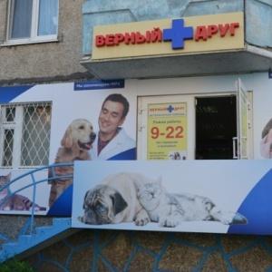 Новый Год ветеринарная клиника верный друг тюмень отзывы вакансии всей
