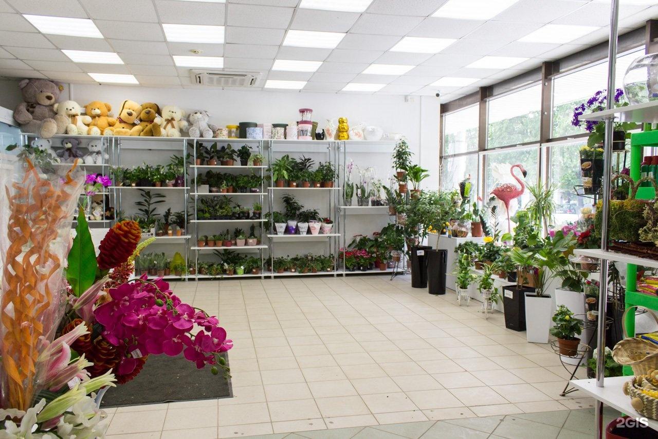 Донецк цветы опт и розница адреса магазинов, хризантемы недорого