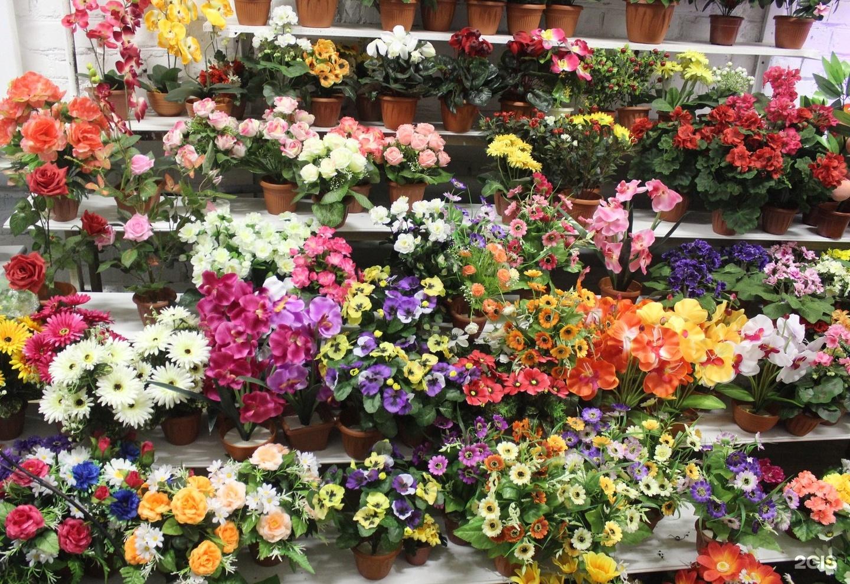 Оптовая продажа цветов омск, цветы