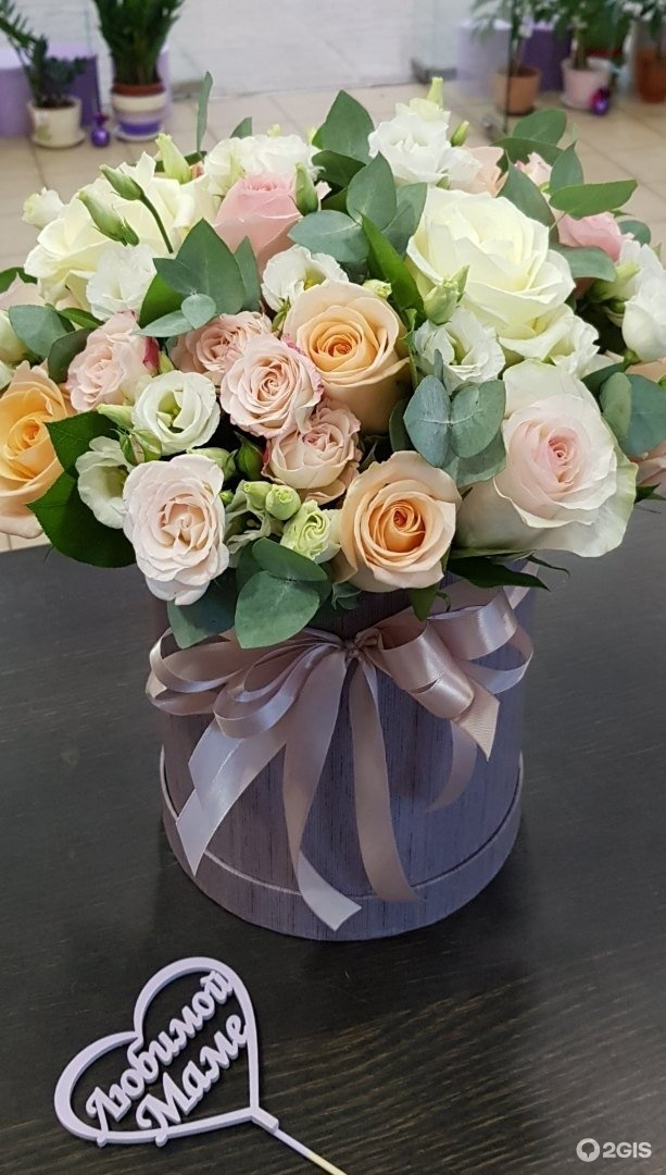 Круглосуточно магазины цветы ухта, склады продаже цветов