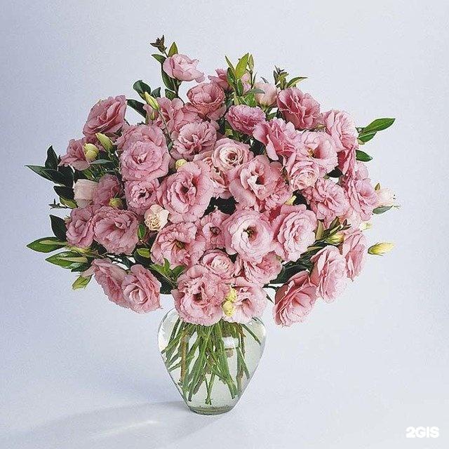 Кустовые цветы в букете фото и название, магазина цветов фото