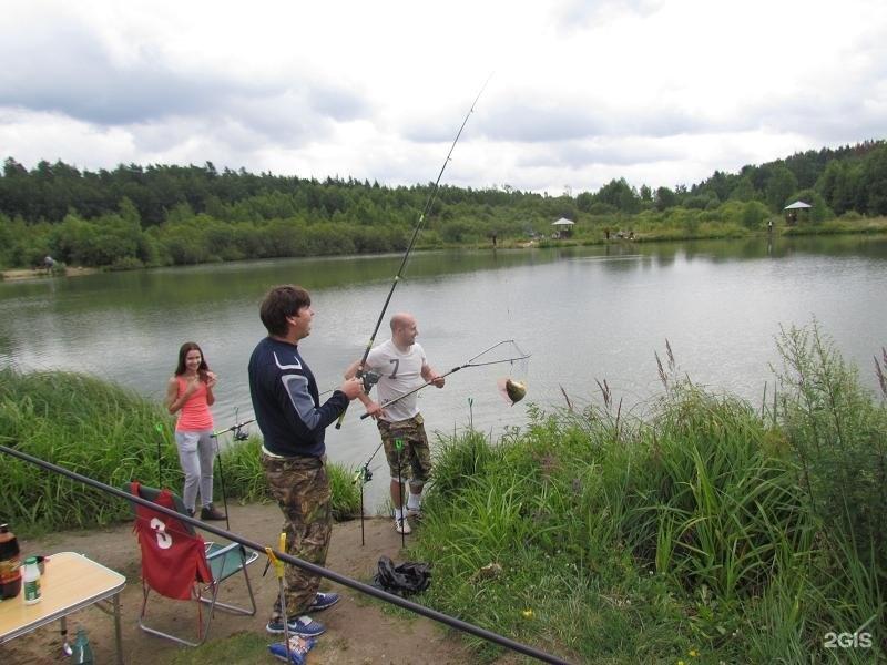 Вести с водоема: Литвиново платник