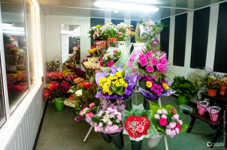 Магазина продажа цветов донецк, цветы