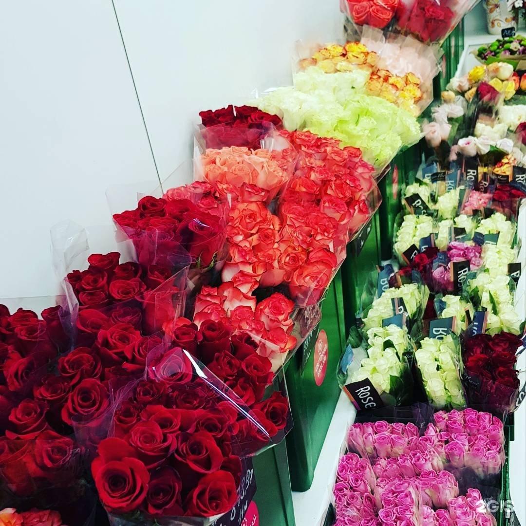 Цветов, карачиха цветы оптом