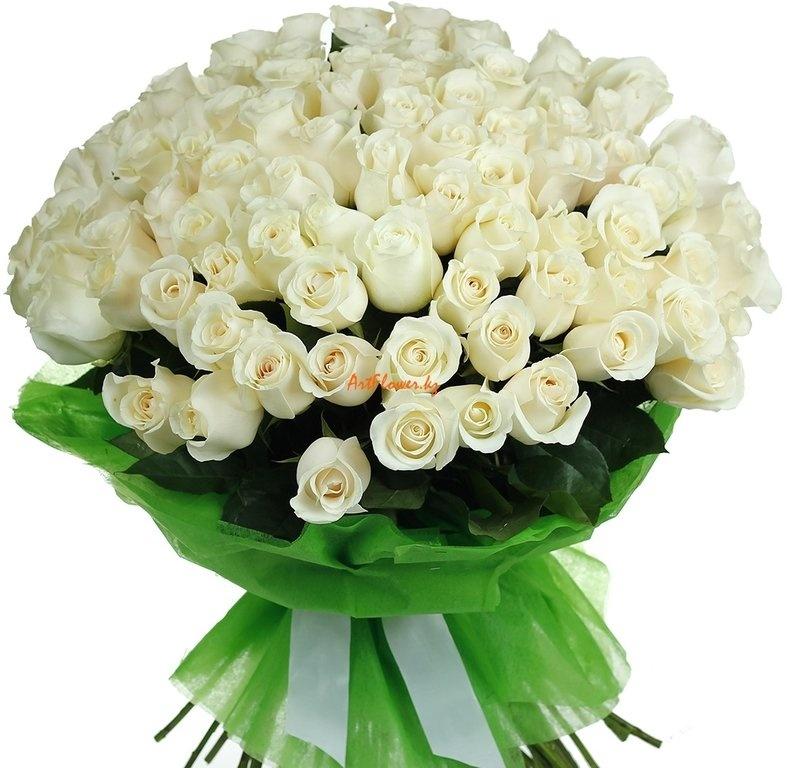 Белые розы букет открытки