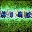 Canto, ресто-клуб